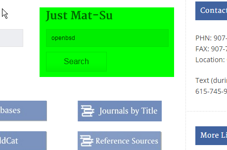 Screenshot of Just Mat-Su searchbox on library site