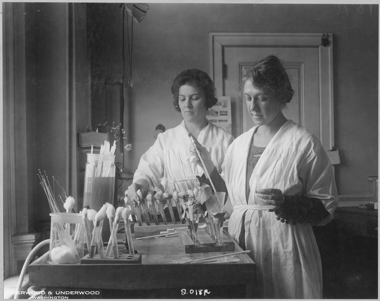 Women in white coats work with rows of test tubes at a table. One is using a pipette.