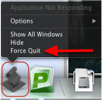 Screenshot of force quit option on the installer