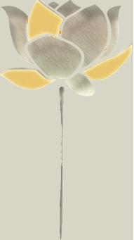 Kroch Asia logo
