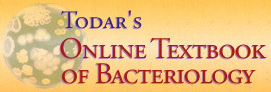 Todar's Textbook of Bacteriology