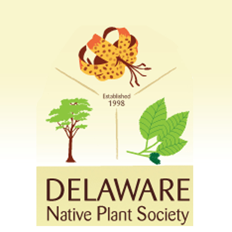 Delaware Native Plant Society Logo
