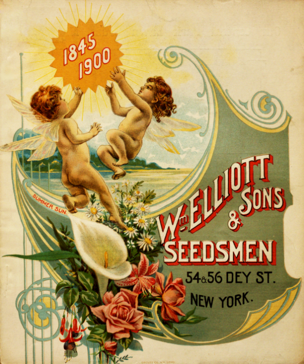 Cherubs and flowers on cover of 1900 seed catalog from Wm Elliott and Sons Seedsmen New York