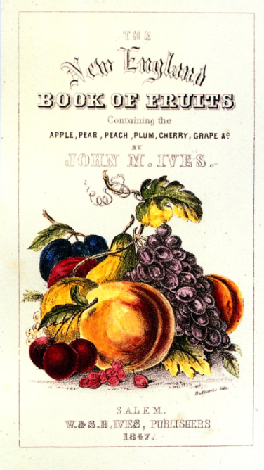 The New England Book of Fruits Containing the apple, pear, peach, plum, cherry, grape, etc. by John M. Ives 1847