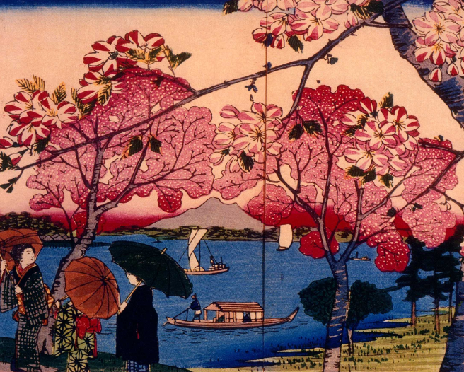 Women walk among trees with pink flowers in park overlooking boats on the lake