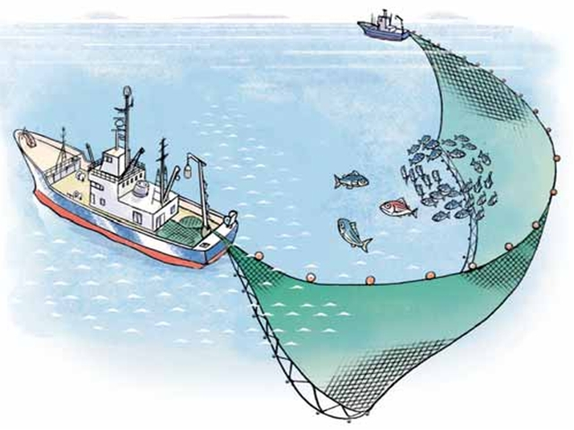 seine fishing image