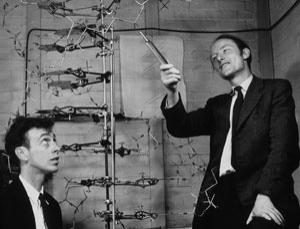 Picture of Watson and Crick with a double helix model.