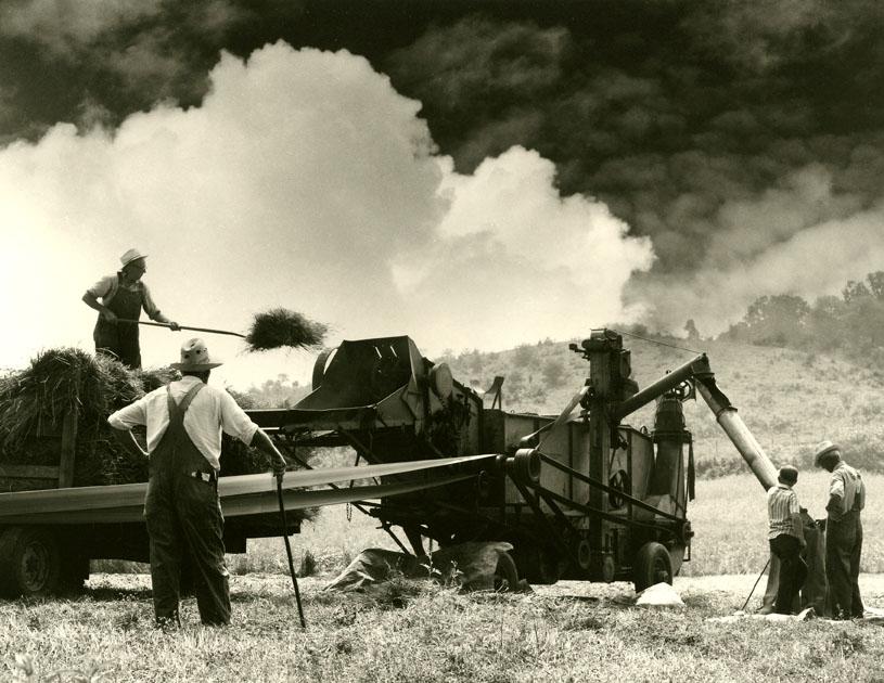 Threshing, Shenandoah Valley, VA 1975