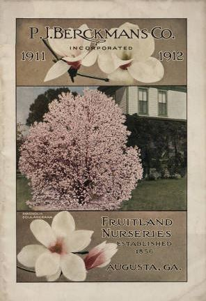 1911-1912 catalog with magnolia tree and flowers