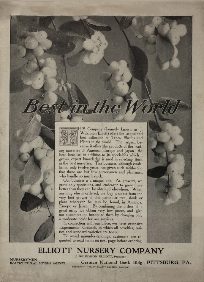 Best in the World 1905 Elliott Nursery Company catalog