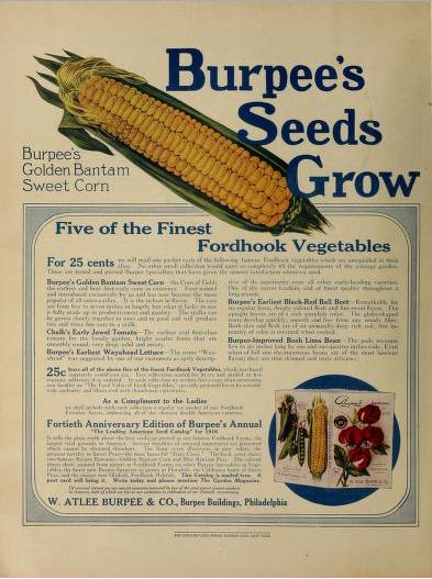 Burpee's Seeds Grow. W Atlee Burpee & Co