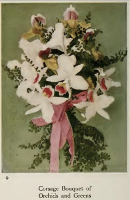 Corsage bouquet of orchids and greens