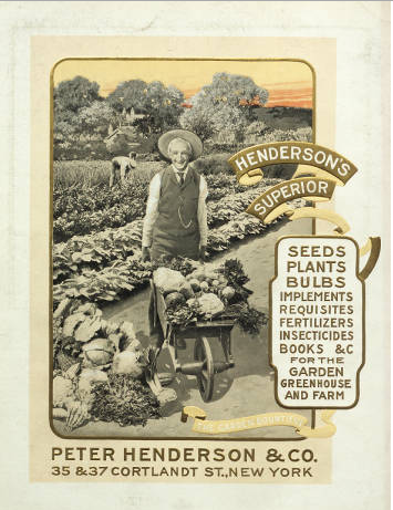 Henderson's Superior Seeds, Plants Bulbs etc. for the Garden, Greenhouse and Farm
