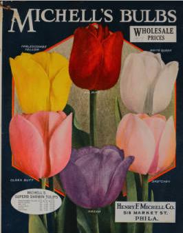 Michell's Bulbs