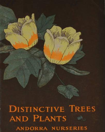 Distinctive Trees and Plants. Andorra Nurseries