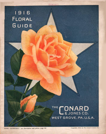 1916 Floral Guide. The Conard and Jones Co.