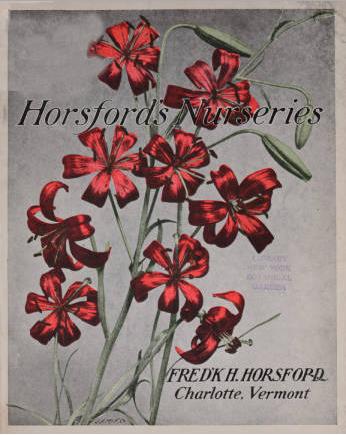 Horsford's Nurseries