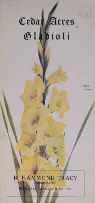 Cedar Acres Gladioli 1920