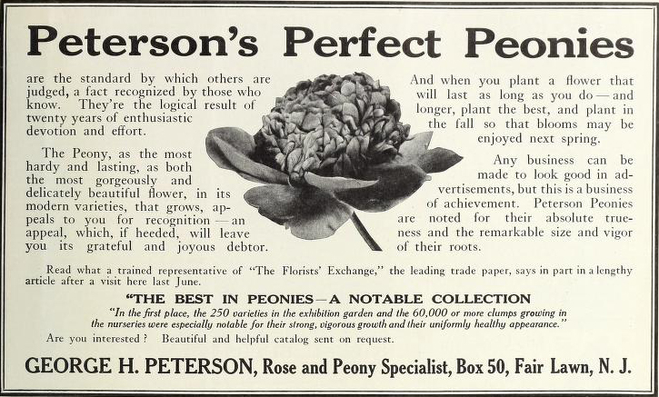 Peterson's Perfect Peonies. George H. Peterson