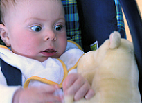 image_of_baby_Sam's_surprise_at_stuffed_animal3