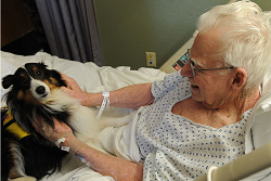 image of therapy dog with elderly woman