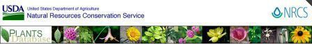 USDA website logo