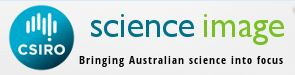 CSIRO Science Image