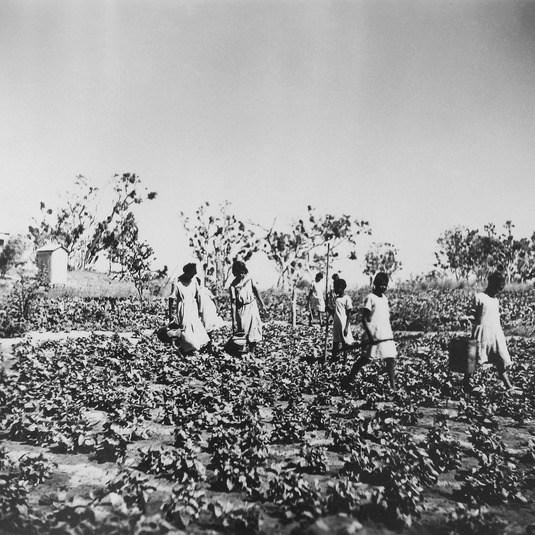 Young girls watering sweet potatoes in the mission gardens, 1936