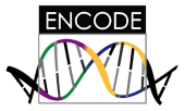 ENCODE
