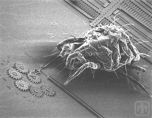 Sandia Labs MEMS device compared to a dust mite