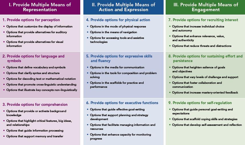 Image showing 3 UDL principles