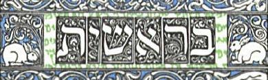 illuminated manuscript of Genesis