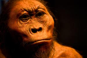 Prehistoric man?