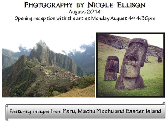 Nicole Ellison photography