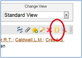 Screen shot of RefWorks citation with gold brackets-brackets only view