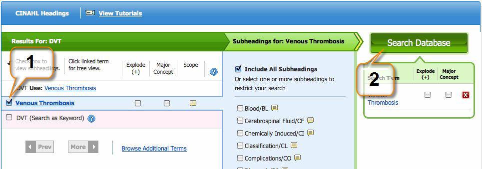 Screenshot showing how to choose a CINAHL subject
