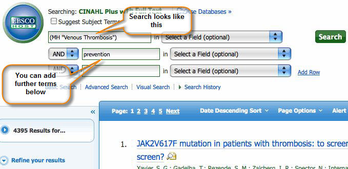 Screenshot of adding terms to search