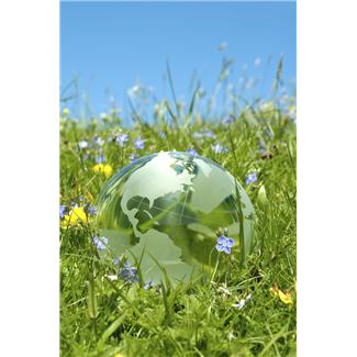 Picture of glass globe in grass