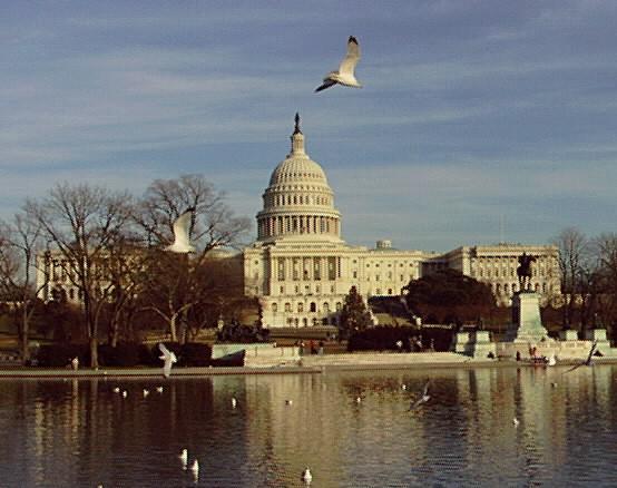 Photo of U.S. Capitol building in Washington, D.C.