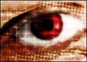 Privacy - Eye