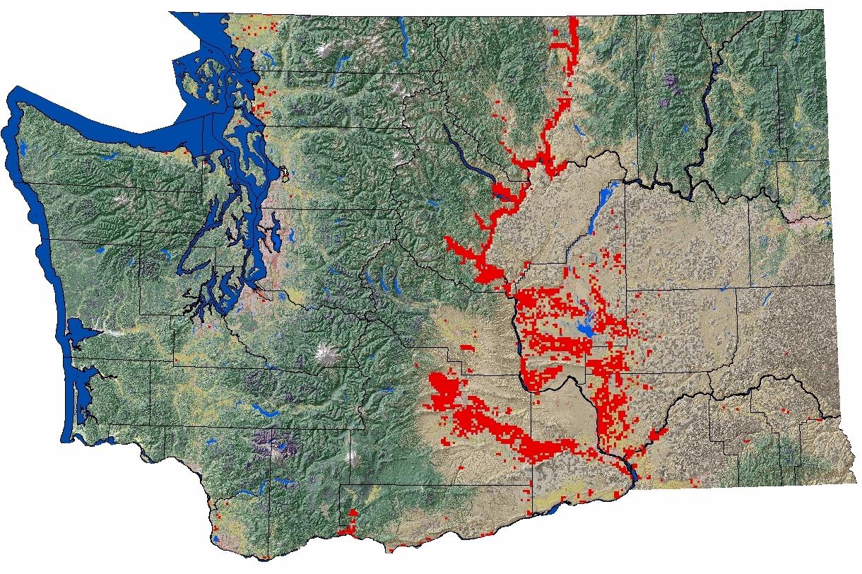 Fruit orchards in Washington - Map