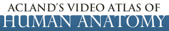 Aclands Video Atlas of Human Anatomy