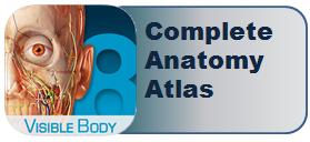 Complete Anatomy Atlas