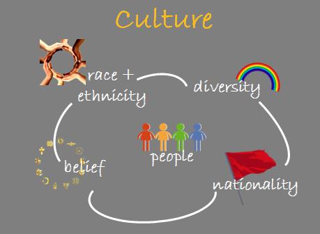 Culture Schematic