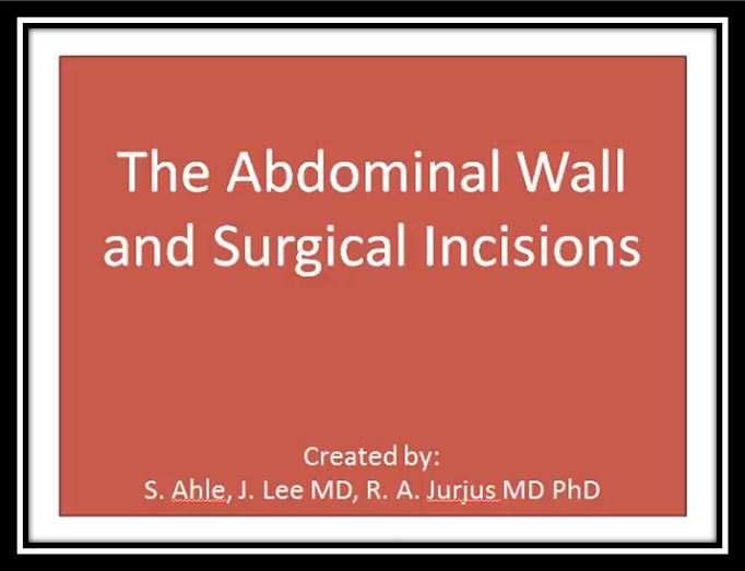 The Abdominal Wall and Surgical Incisions