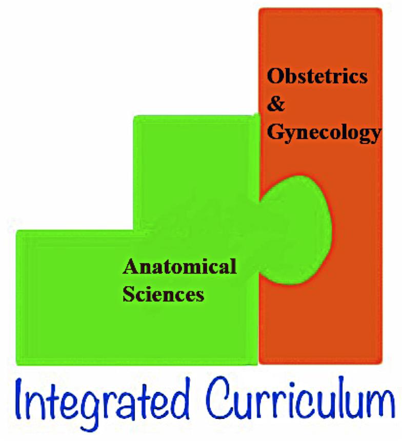Anatomy/OB-GYN Logo