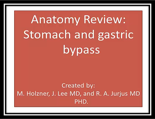 Anatomy Review: Stomach and gastric bypass