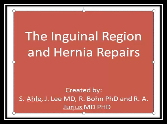 The Inguinal Region and Hernia Repairs