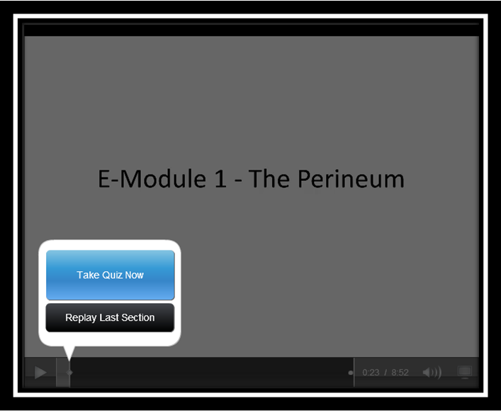 E-module 1 - The Perineum