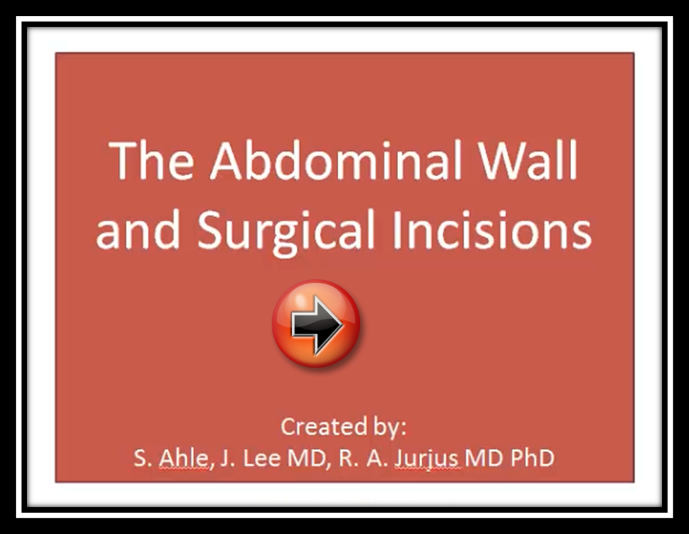 The Abdominal Wall and Surgical Inscisions